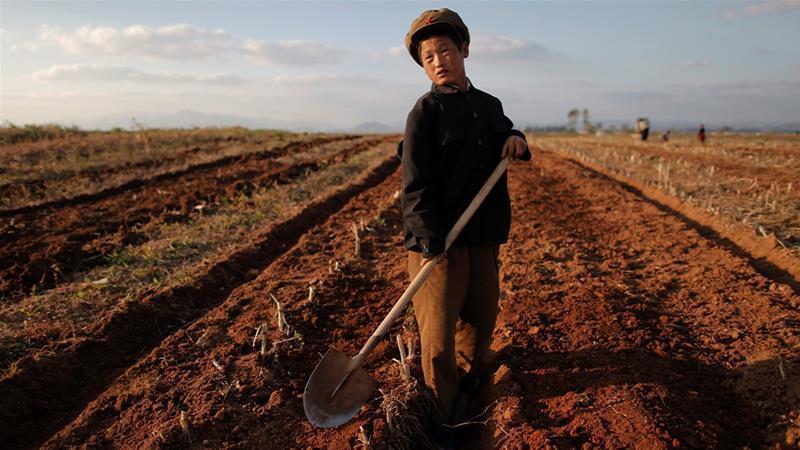 سازمان ملل: نصف مردم کره شمالی سوء تغذیه دارند، 30 هزار کودک در معرض مرگ