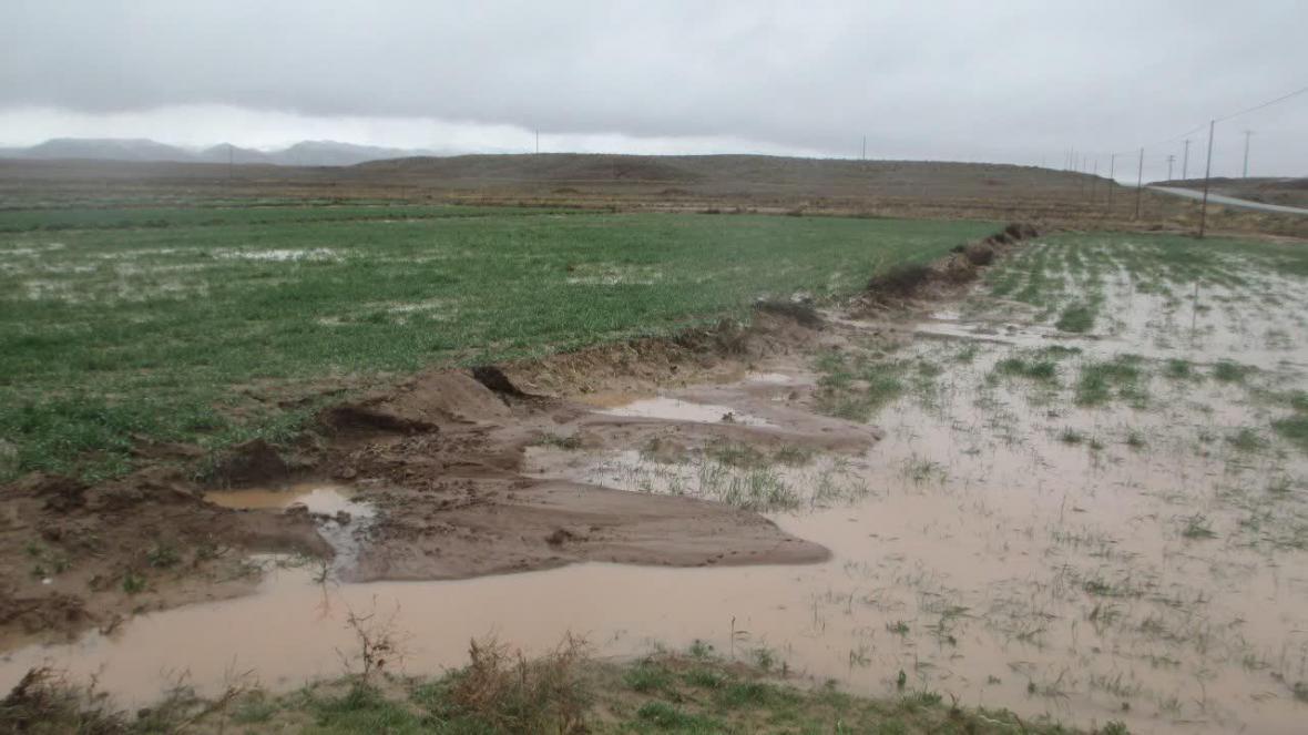 خبرنگاران حوادث طبیعی 835 میلیارد ریال به کشاورزی سبزوار خسارت زد