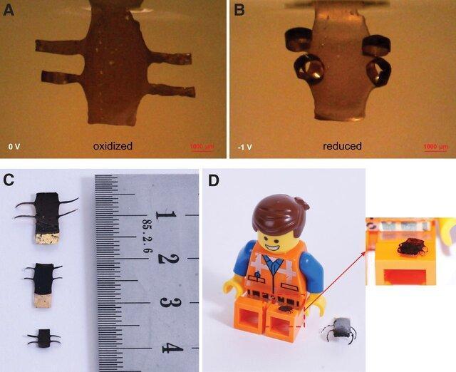 چاپ 4 بعدی روبات های نرم در مقیاس میکرونی