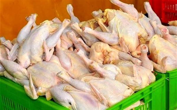 بیش از 7 هزار تن گوشت مرغ گرم امروز به بازار عرضه شد