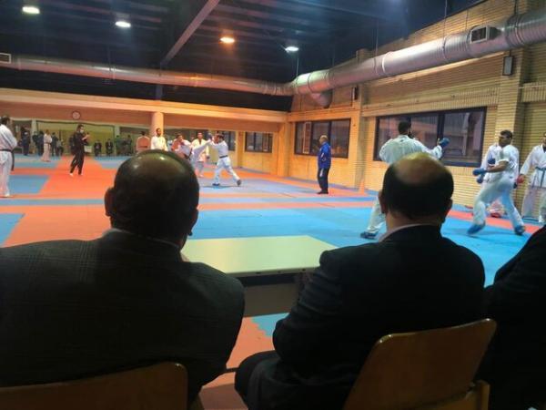 سلطانی فر: پورشیب در ورزش ایران الگوست، در کنار کاراته هستیم